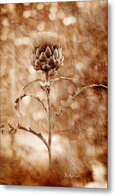 Artichoke Bloom Metal Print by La Rae  Roberts