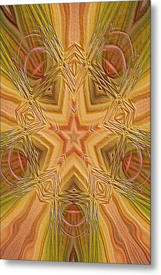 Artistic Star Of Texas Metal Print by Linda Phelps