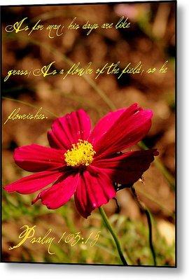 As A Flower Of The Fields Metal Print by Elizabeth Babler