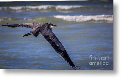 As Easy As This Metal Print by Marvin Spates