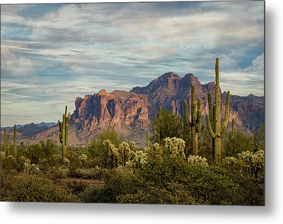 Metal Print featuring the photograph As The Evening Arrives In The Sonoran  by Saija Lehtonen