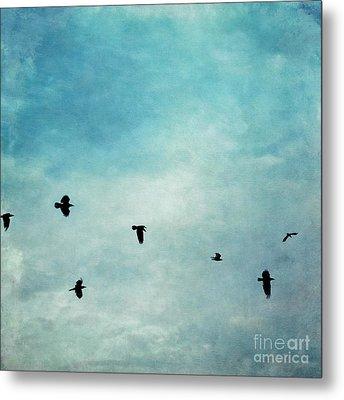 As The Ravens Fly Metal Print by Priska Wettstein