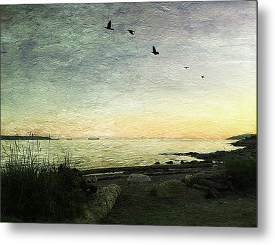 Metal Print featuring the photograph As The Sky Darkens  by Connie Handscomb