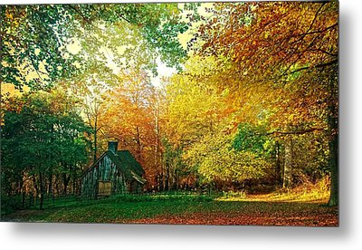 Ashridge Autumn Metal Print
