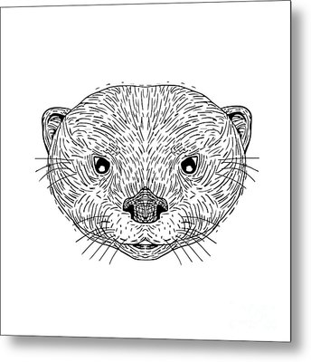Asian Small-clawed Otter Head Drawing Metal Print