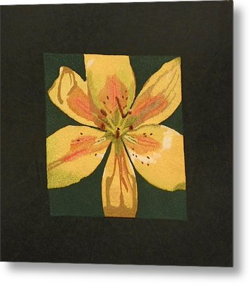 Asiatic Lily Metal Print by Jenny Williams