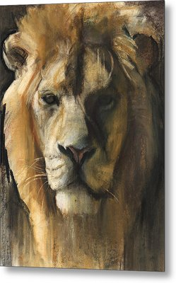 Asiatic Lion Metal Print by Mark Adlington