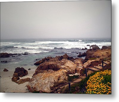Asilomar Beach Pacific Grove Ca Usa Metal Print