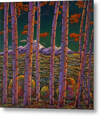 Aspen At Night Metal Print by Johnathan Harris