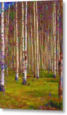 Aspen Dawn II Metal Print by Brian Davis