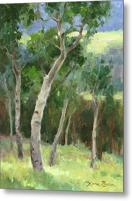 Aspen Grove I Metal Print by Anna Rose Bain
