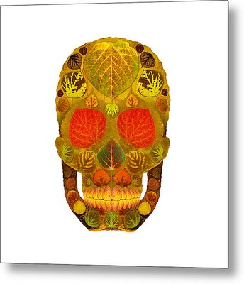 Aspen Leaf Skull 12 Metal Print by Agustin Goba