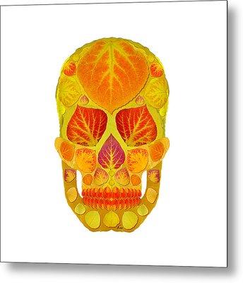 Aspen Leaf Skull 13 Metal Print by Agustin Goba