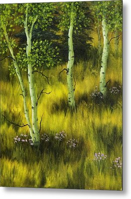 Aspen Meadow Metal Print by Rick Bainbridge