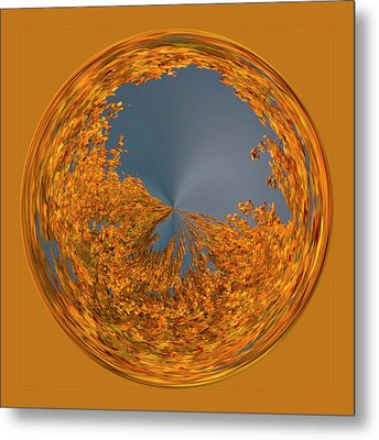 Metal Print featuring the photograph Aspen Orb by Bill Barber