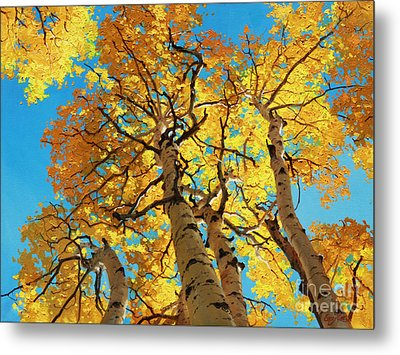 Aspen Sky High 2 Metal Print by Gary Kim