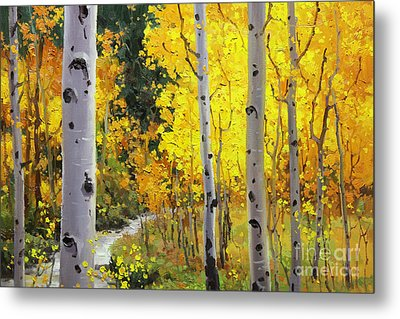 Aspen Stream Metal Print by Gary Kim