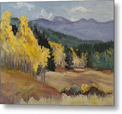 Aspen Tree Splash Of Fall Steamboat Springs Colorado Metal Print by Zanobia Shalks