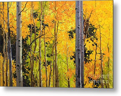 Aspen Trees Metal Print by Gary Kim