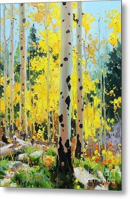 Aspens In Golden Light Metal Print by Gary Kim