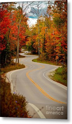 Asphalt Creek In Door County Metal Print