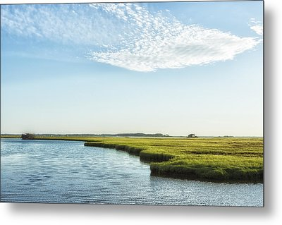 Assateague Island Metal Print