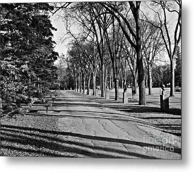 Assiniboine Park Metal Print by Cendrine Marrouat