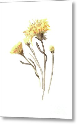 Aster Yellow Flower Abstract Art Print, Asters Watercolor Painting, Floral Minimalist Wall Decor Metal Print by Joanna Szmerdt