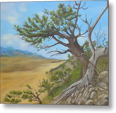 At A Tangent Metal Print by Merle Blair