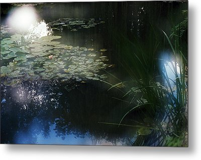 Metal Print featuring the photograph At Claude Monet's Water Garden 3 by Dubi Roman