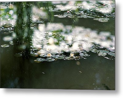 Metal Print featuring the photograph At Claude Monet's Water Garden 5 by Dubi Roman