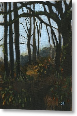 At Home With The Trees Metal Print