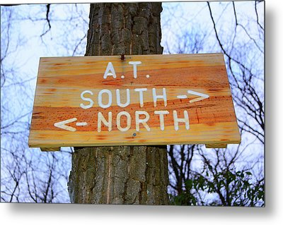 At North To South Metal Print by Raymond Salani III