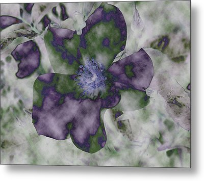 At Peace Metal Print by Bonnie Bruno