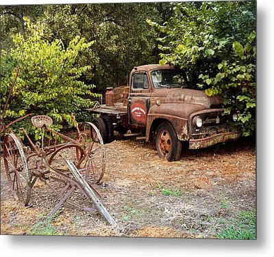 At Rest Metal Print by Marty Koch