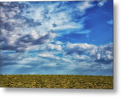 At The Edge Of Terra Firma Metal Print by Darby Donaho