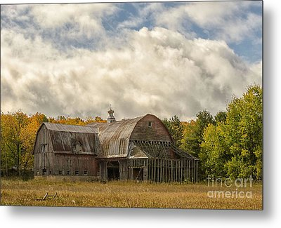 At The Edge Of The Medow Metal Print by JRP Photography