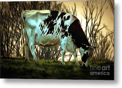 Metal Print featuring the painting At The End Of The Day - Black And White Cow by Janine Riley