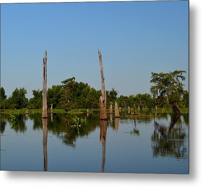 Atchafalaya Basin 18 Metal Print by Maggy Marsh