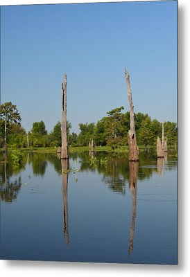 Atchafalaya Basin 19 Metal Print by Maggy Marsh
