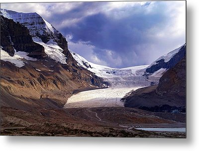 Athabasca Glacier Metal Print by Heather Vopni