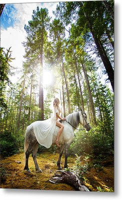 Metal Print featuring the photograph Athena's Clearing by Dario Infini
