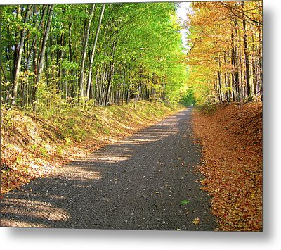 Atv Ride In Wisconsin Metal Print by Randy Rosenberger
