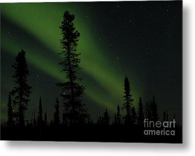 Aurora Borealis The Northern Lights Interior Alaska Metal Print