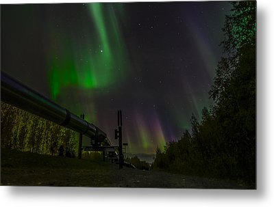 Aurora Over  Trans-alaska Pipeline Metal Print by Robin Williams