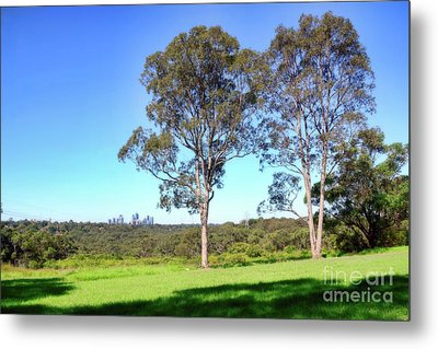 Metal Print featuring the photograph Aussie Gum Tree Landscape By Kaye Menner by Kaye Menner