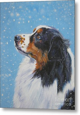 Australian Shepherd In Snow Metal Print by Lee Ann Shepard