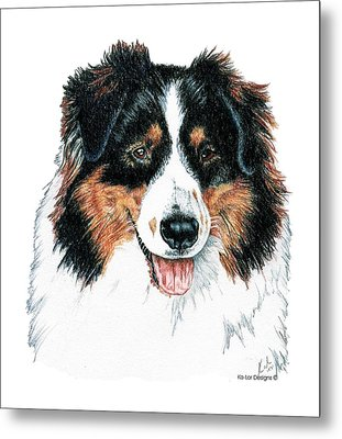 Australian Shepherd, Tri Color Metal Print
