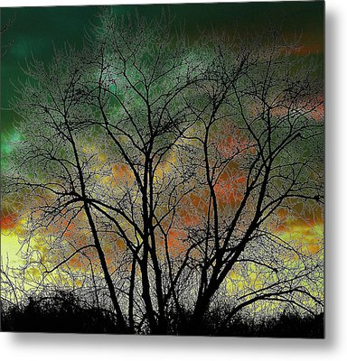 Autumn 4 Metal Print