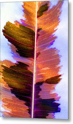 Autumn Abstract Metal Print by Carolyn Stagger Cokley